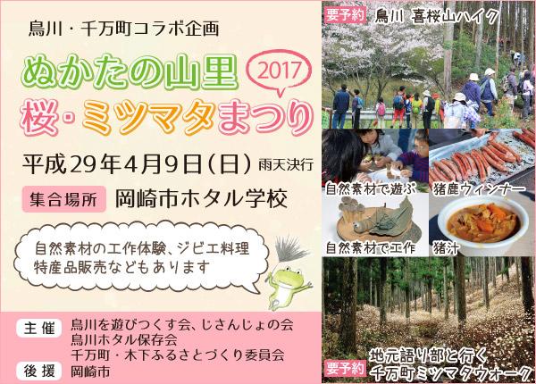 ぬかたの山里 桜・ミツマタまつり 2017