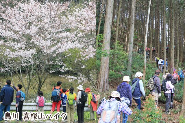 鳥川喜桜山ハイク