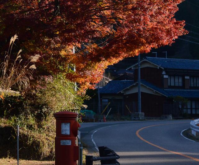 「山里の紅葉」神谷 忍