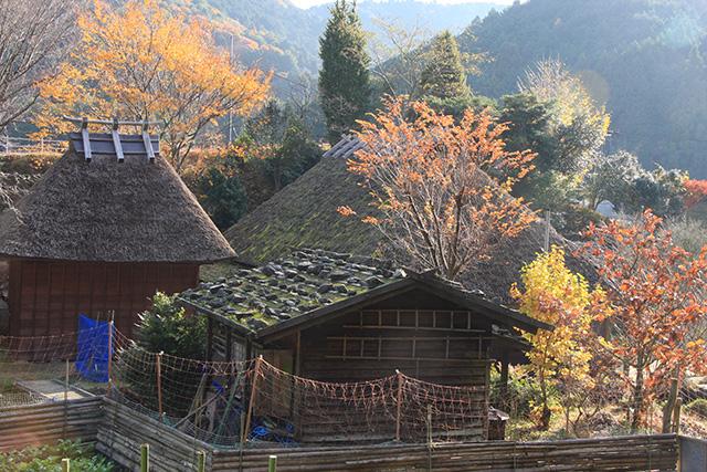 「晩秋の茅葺き屋敷」浅井 明