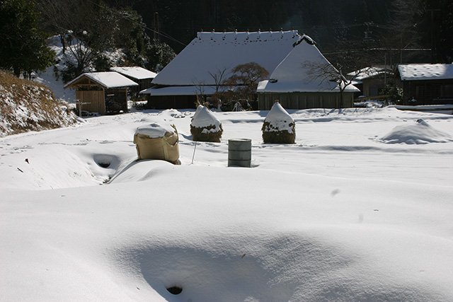 「雪景色」荒川 豊数