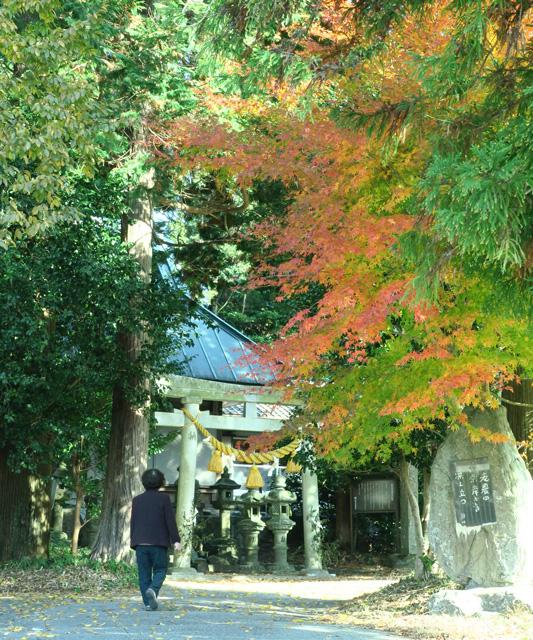 「氏神様も秋の装い」浅井 明