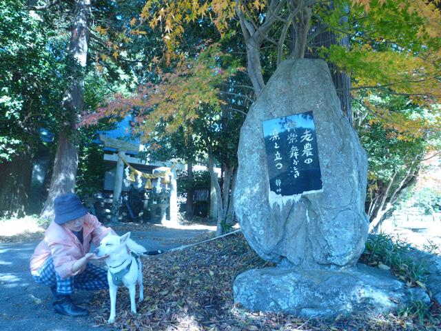 「深まりゆく秋に愛犬と」荻野 紀子