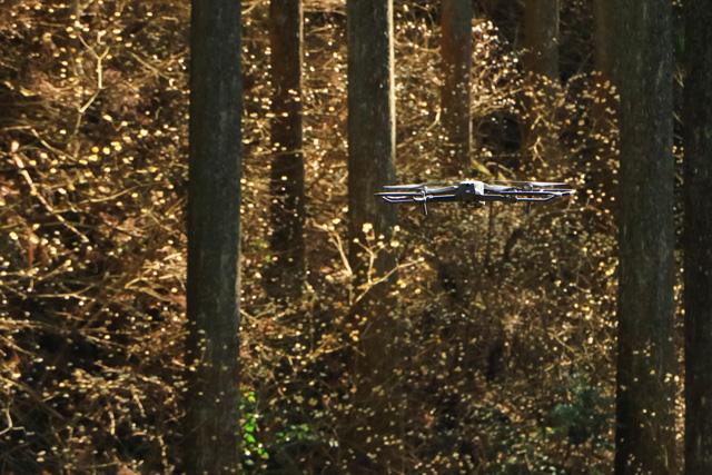 「UFO飛来」高橋 敏郎